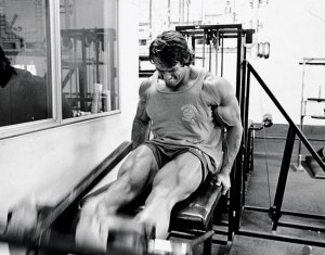 Arnold-Legs-Main